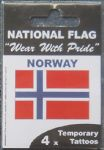 Norway Country Flag Tattoos.